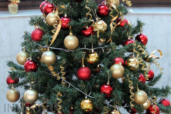 Умную новогоднюю ель установили в Минске